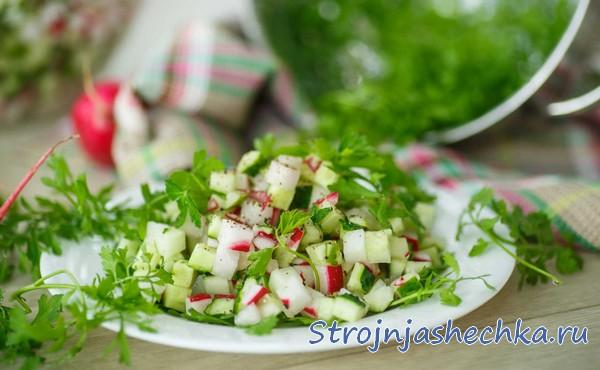 Салат с редиской, огурцом и зеленью